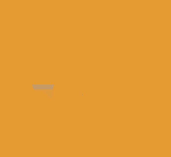 Isabella Vini